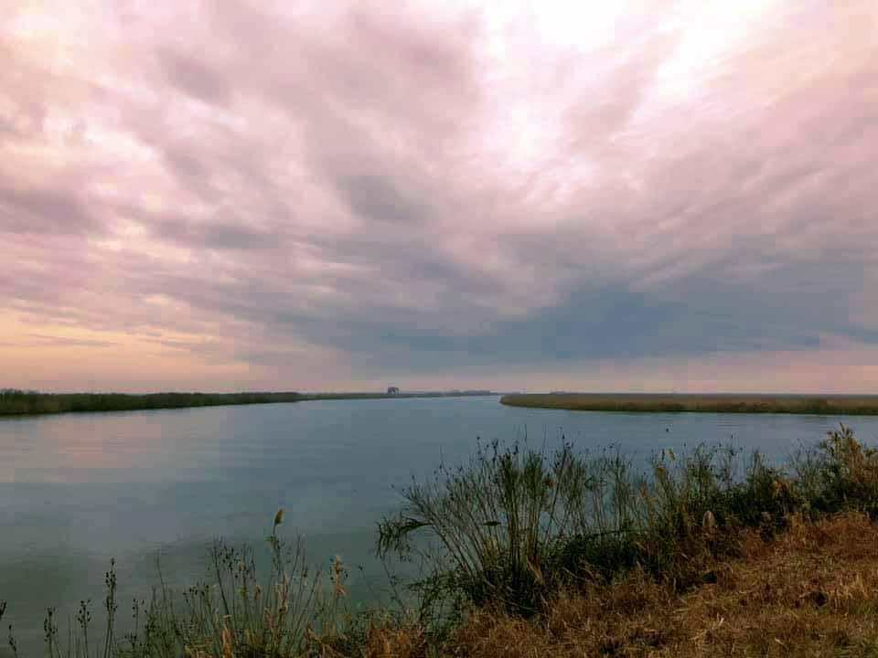 Tramonto  nel Delta
