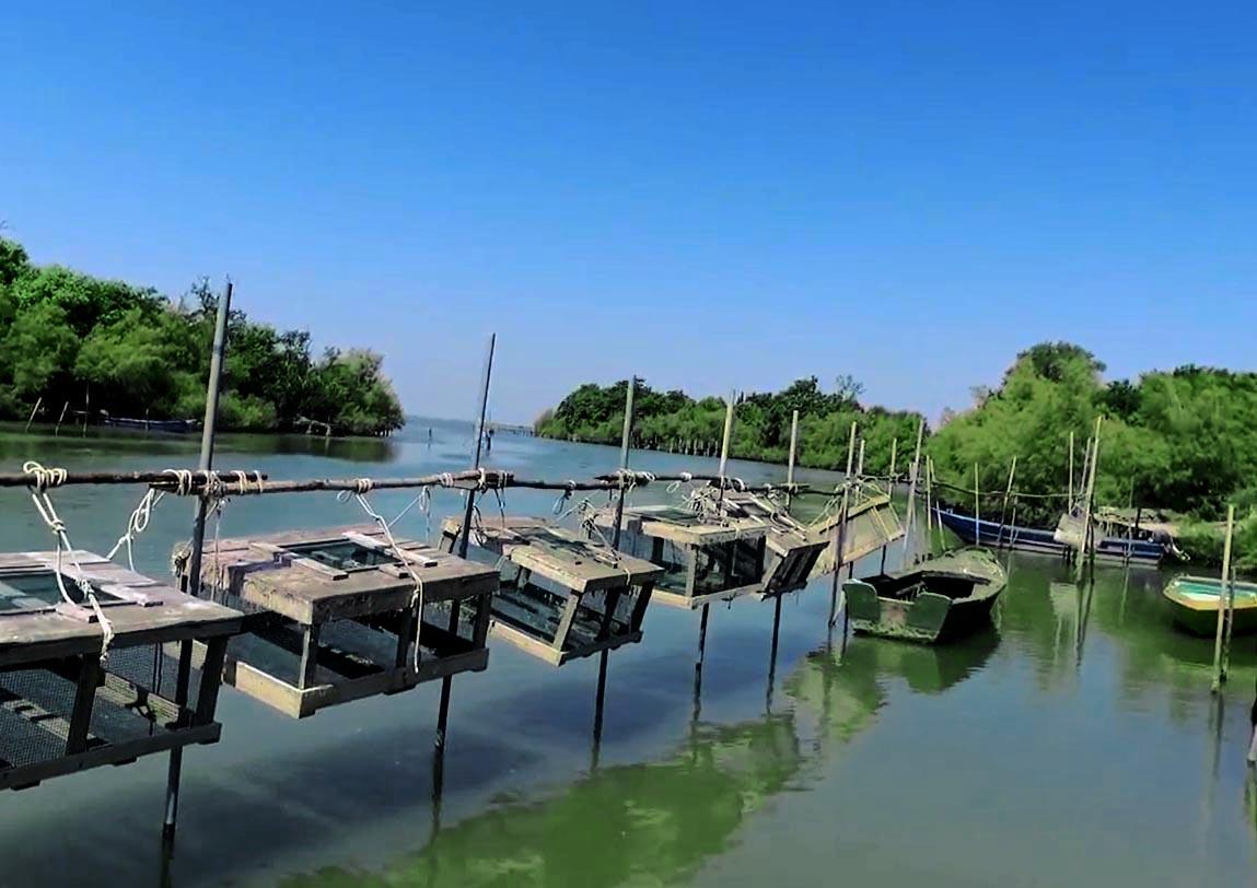 Valli2 Parco del Delta del PO