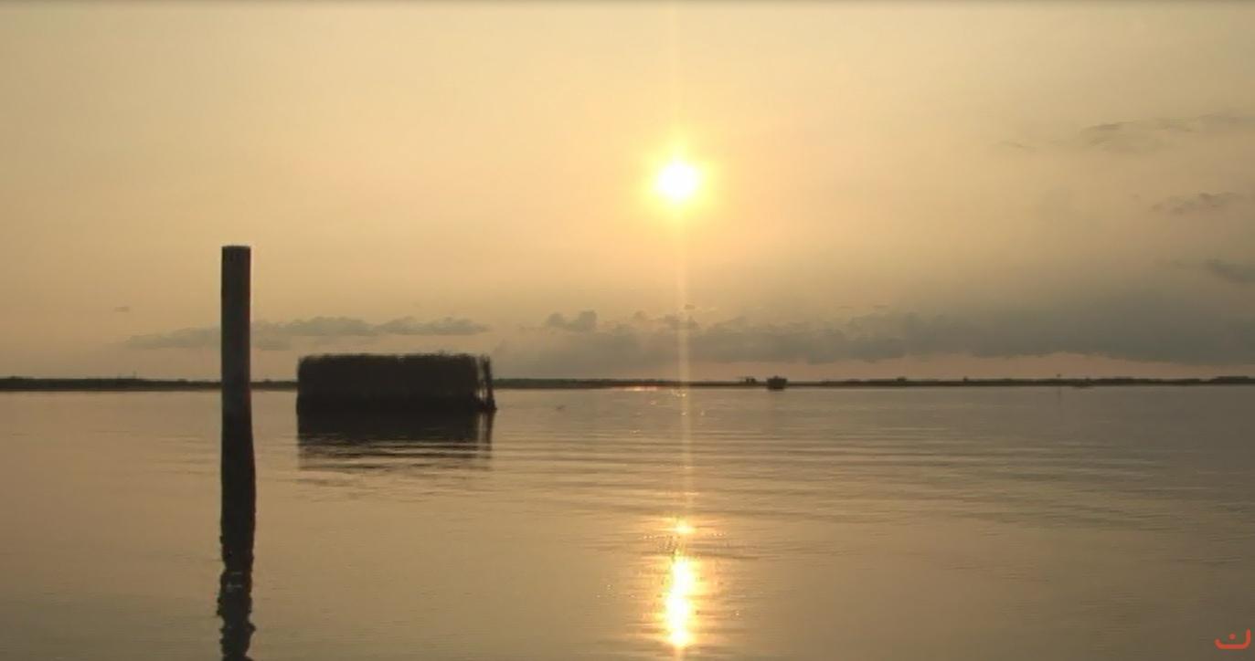 Laguna nel delta del Po